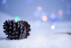 Pine come. Christmas background with pine cone on the snow winter wood bokeh light Royalty Free Stock Photography