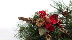 Christmas background with pine tree branch, pine cones, red flower in snow Stock Photos