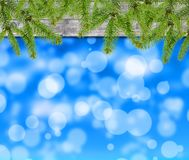 Christmas background with pine tree. Close vector illustration