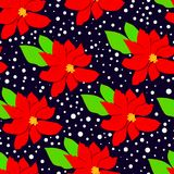 Winter floral seasmless pattern with poinsettia and leaves. Stock Photo