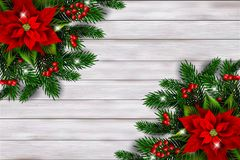 Christmas background with poinsettia. Vector. stock photo