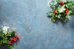 Christmas background, holly leaves and red berries, covered in s royalty free stock images