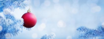 Christmas Background of Red Ball on the Snow Blue Tree Stock Images