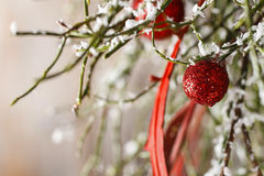 Christmas background: red balls, christmas tree, snow Stock Image
