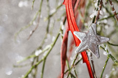 Christmas background: red balls, christmas tree, snow Stock Image