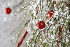 Christmas background: red balls, christmas tree, snow Royalty Free Stock Images