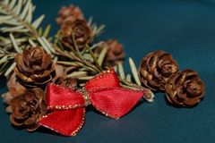 Red bow, fir cones and fir twig. Christmas background - red bow, fir cones and fir twig Royalty Free Stock Photos