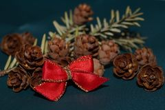 Red bow, fir cones and fir twig. Christmas background - red bow, fir cones and fir twig Stock Image