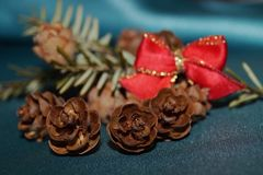 Red bow, fir cones and fir twig. Christmas background - red bow, fir cones and fir twig Stock Images