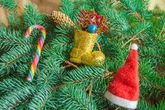 Christmas background, red Santa hat, candy stick and boots lying on spruce branches Royalty Free Stock Photography