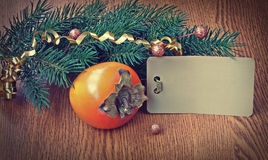 Christmas background with ripe persimmons Stock Photos