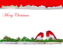 Christmas background with ripped paper and ball Stock Image