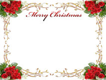 Christmas background with roses and leaves Stock Photography