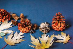 Christmas background shots, leaves on a blue background royalty free stock photography