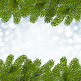Christmas background with snow and branches Royalty Free Stock Photo