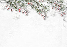 Christmas background with snow covered fir branches and red berr. Ies. Greeting card Royalty Free Stock Photography