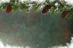 Christmas background with snow fir tree Stock Photo