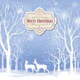 Christmas background. Snow winter landscape greeting card Royalty Free Stock Images