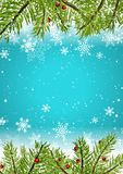 Christmas background with snowflakes and pine tree branches. And berries Stock Images