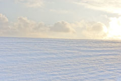 Christmas background snowy field in winter Royalty Free Stock Photography
