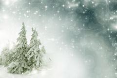 Christmas background with snowy fir trees. Vintage Christmas background with snowy fir trees Stock Photography