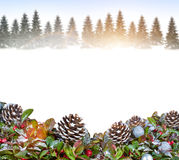 Christmas background with snowy forest Royalty Free Stock Image