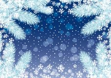 Christmas background with spruce branches. Christmas background with spruce branches on a blue background Stock Image