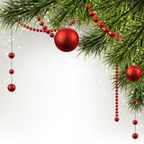 Christmas background with spruce branches. Stock Photos
