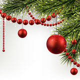 Christmas background with spruce branches. Royalty Free Stock Images