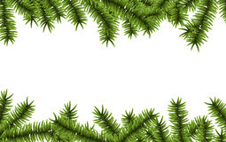 Christmas background with spruce branches. Royalty Free Stock Image