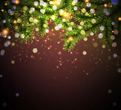 Christmas background with spruce branches. Royalty Free Stock Photography