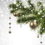 Christmas background with spruce branches. Stock Photo