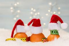 Christmas background with tangerines and measuring meter. Concept of the Christmas diet Royalty Free Stock Images