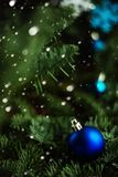 Forest Christmas tree branch with blue ornament. New year greeting background. Copy space. Royalty Free Stock Photos