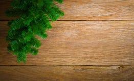 Christmas background themes. Christmas tree, Christmas background themes Royalty Free Stock Photos