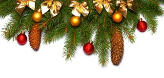 Christmas background. Top view with copy space. fir tree with cone isolated on white background royalty free stock images