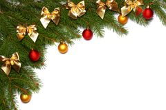Christmas background. Top view with copy space. fir tree with cone isolated on white background royalty free stock photography