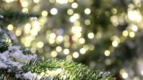 Christmas background, tree branch, snow, lights bokeh. Snowy fir tree branch close up against blurry Christmas lights bokeh background stock footage