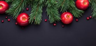Christmas background with tree branches, red apples and cranberries. Dark wooden table. Banner. Top view. Copy space stock photos