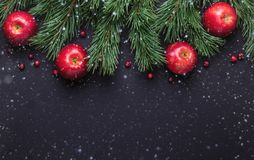 Christmas background with tree branches, red apples and cranberries. Dark wooden table. Snowfall drawing effect. Top view. Copy space royalty free stock image
