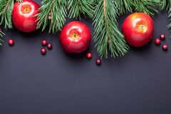 Christmas background with tree branches, red apples and cranberries. Dark wooden table royalty free stock photos