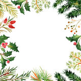 Christmas background with twigs and berries. Christmas background with twigs, pines and berries Royalty Free Stock Photo