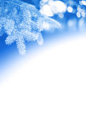 Christmas background. With white a field for text. Template for greeting card Royalty Free Stock Image