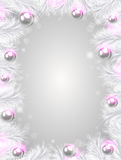 Christmas background with white fir branches Royalty Free Stock Images