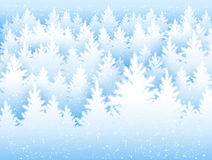 Christmas background with winter forest Royalty Free Stock Photography