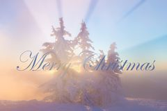 Christmas background with winter landscape in the mountains during sunrise/ Beautiful sunrise light. Christmas card stock photos