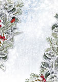 Christmas Background With Snowy Branches And Bullfinch Royalty Free Stock Photo