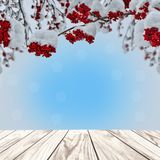 Christmas background with wooden planks and red rowan berries. Winter background with wooden planks and branch of rowan tree with red berries snow covered royalty free stock images