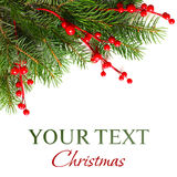 Christmas background with Xmas tree. Christmas background with Xmas green fir tree Royalty Free Stock Photos