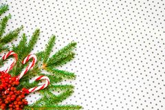 Christmas background with xmas tree. royalty free stock photo